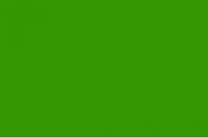Подкладка (трава)
